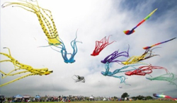 National Festival of Kites